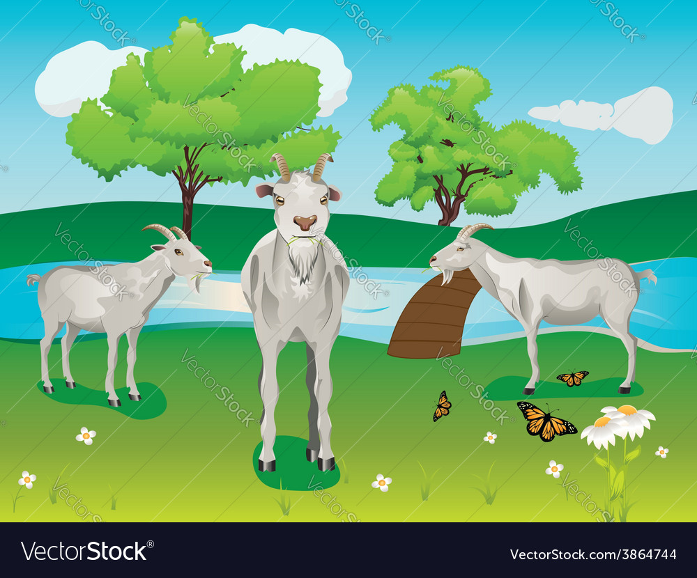 Goat and green lawn2 vector | Price: 1 Credit (USD $1)