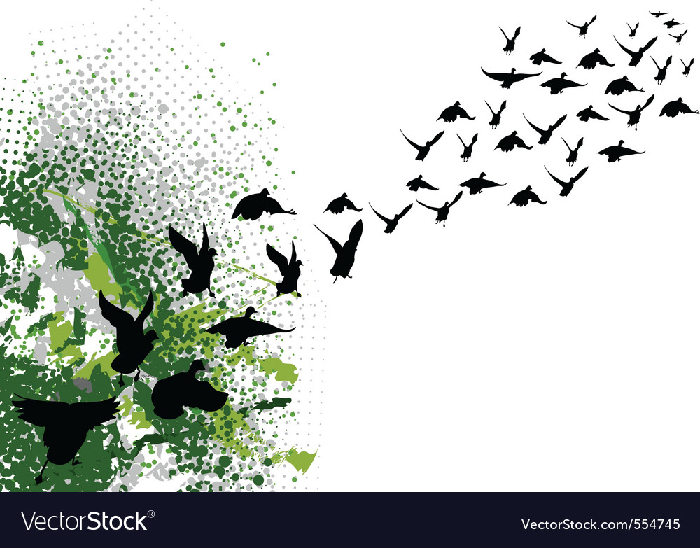 Flying black silhouettes of birds vector | Price: 1 Credit (USD $1)