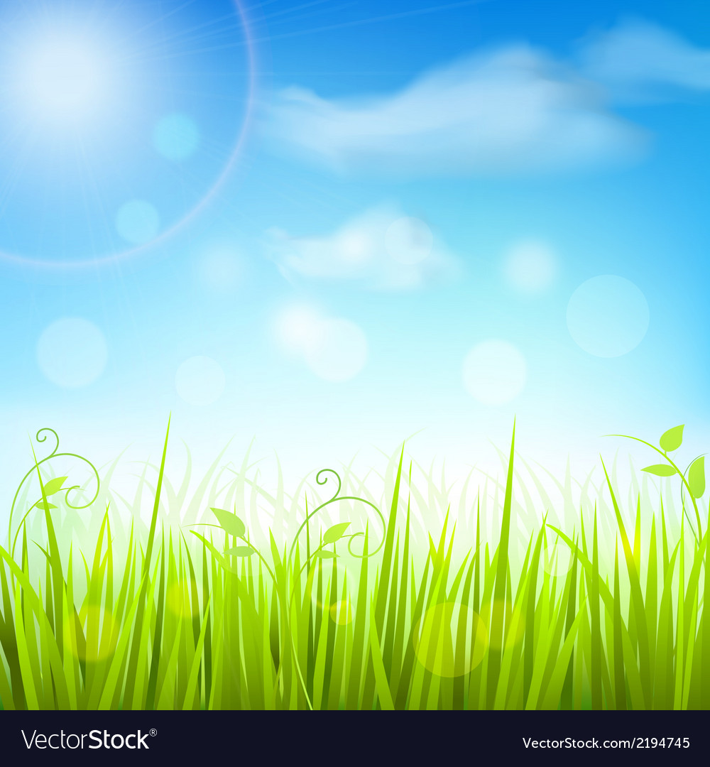 Spring meadow grass blue sky poster vector | Price: 1 Credit (USD $1)