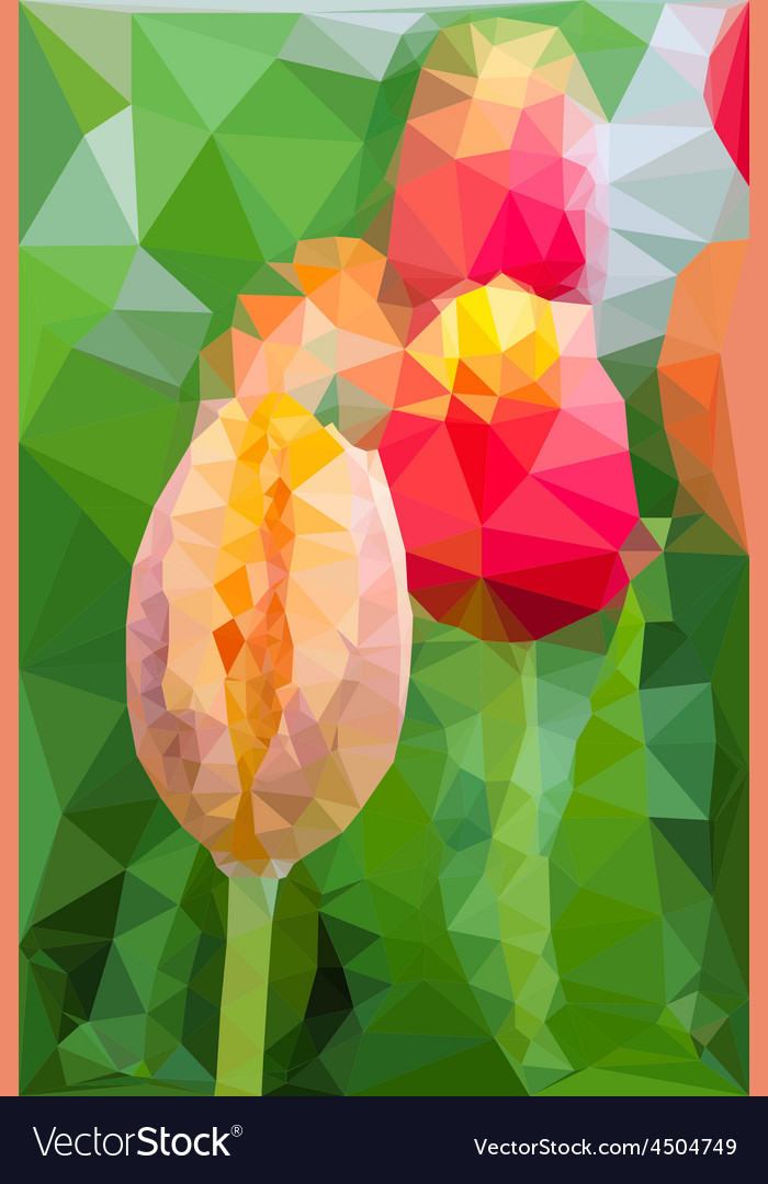 Triangular low poly style of tulip vector | Price: 1 Credit (USD $1)