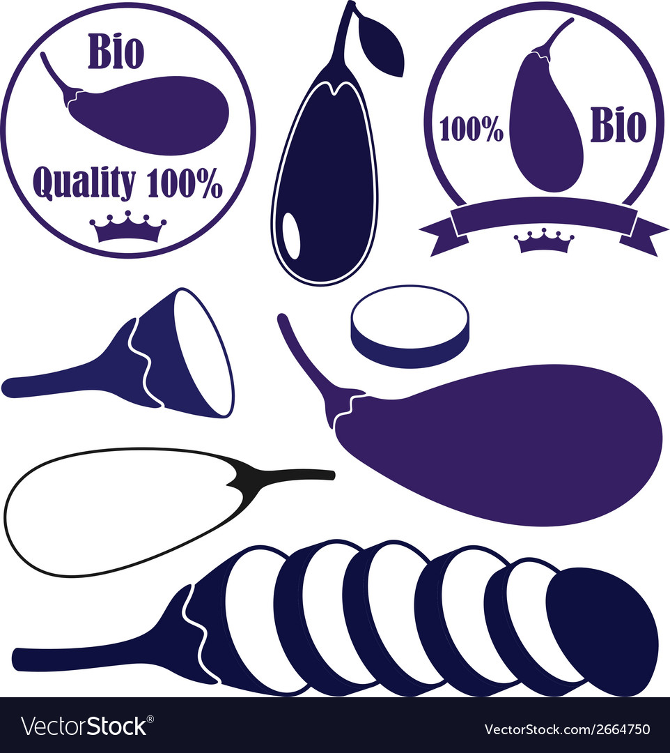 Eggplant vector | Price: 1 Credit (USD $1)