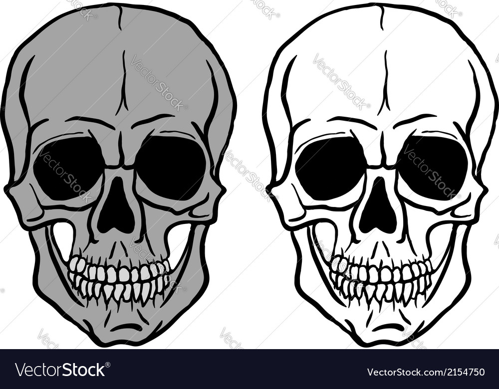 Set of human skulls - vector | Price: 1 Credit (USD $1)