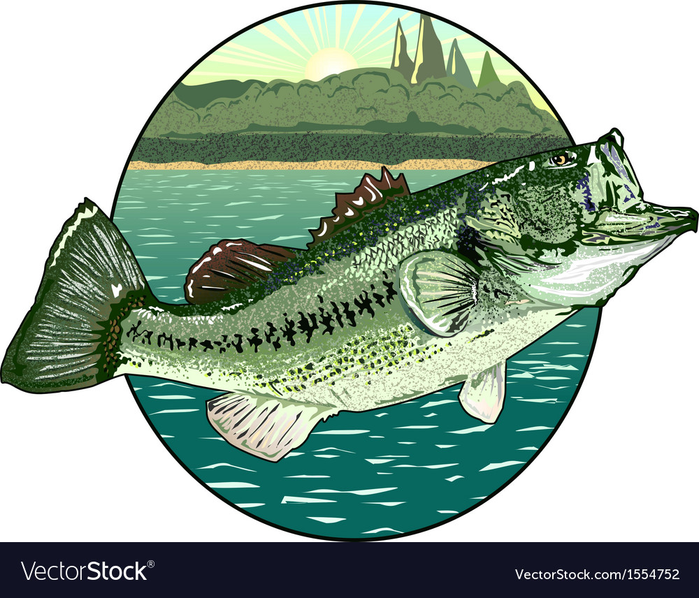 Big mouth bass vector | Price: 1 Credit (USD $1)