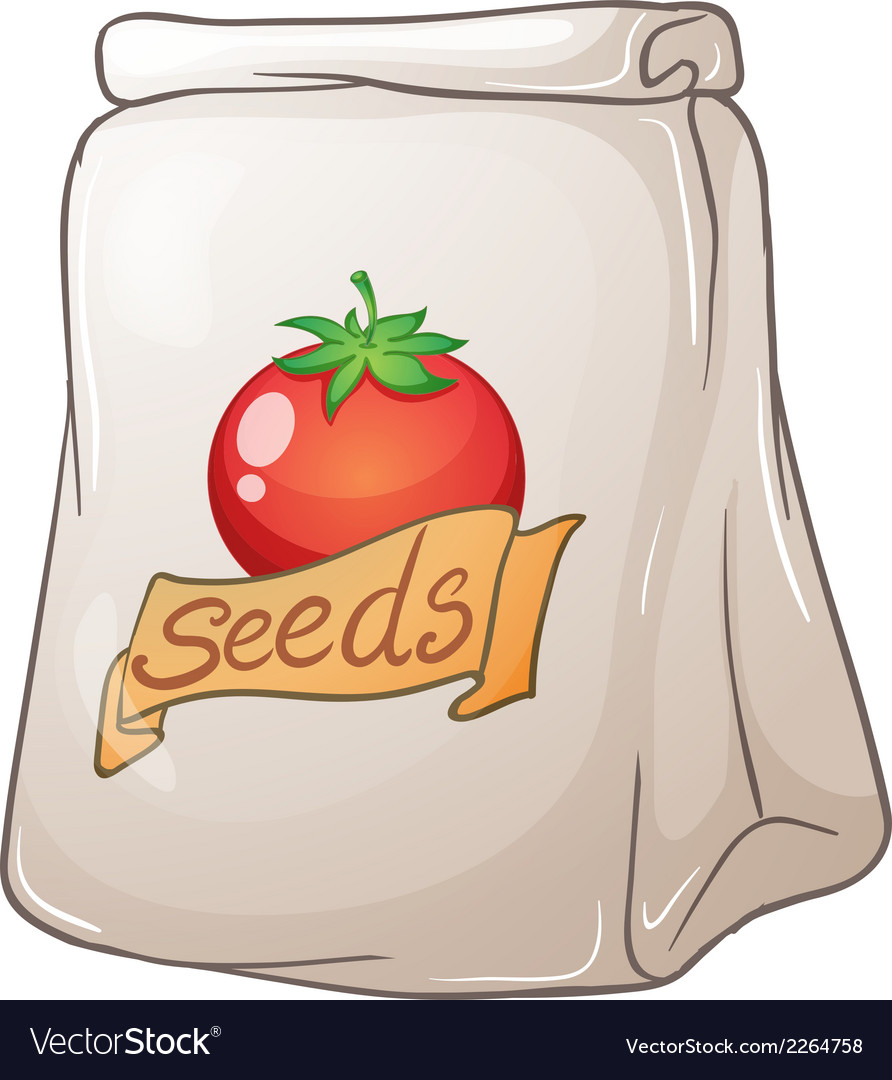 A pouch of tomato seeds vector | Price: 1 Credit (USD $1)