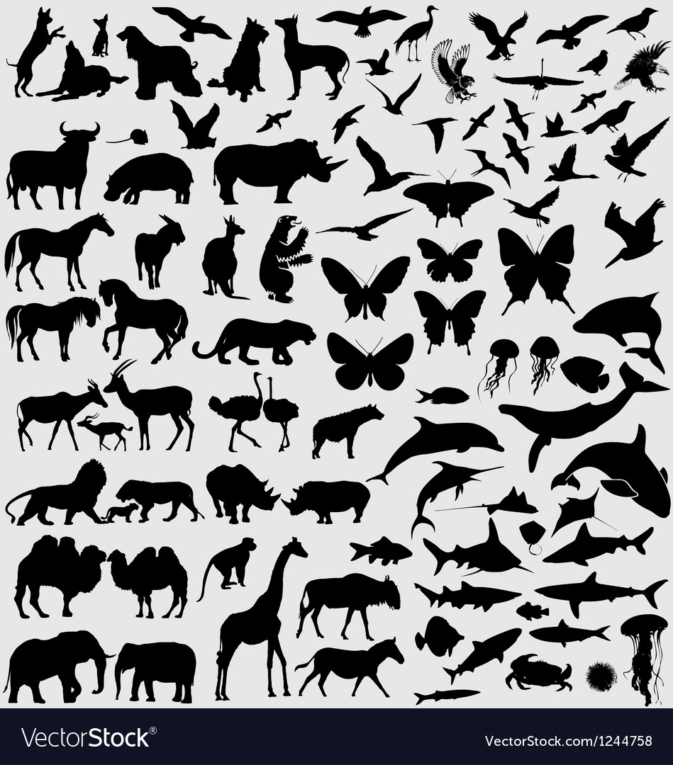 Animals silhouette set vector
