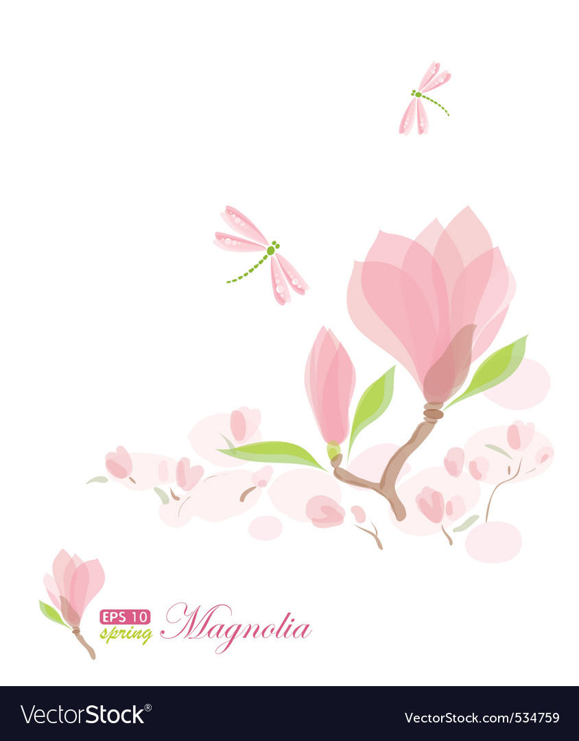 Magnolia branch and dragonfly vector | Price: 1 Credit (USD $1)