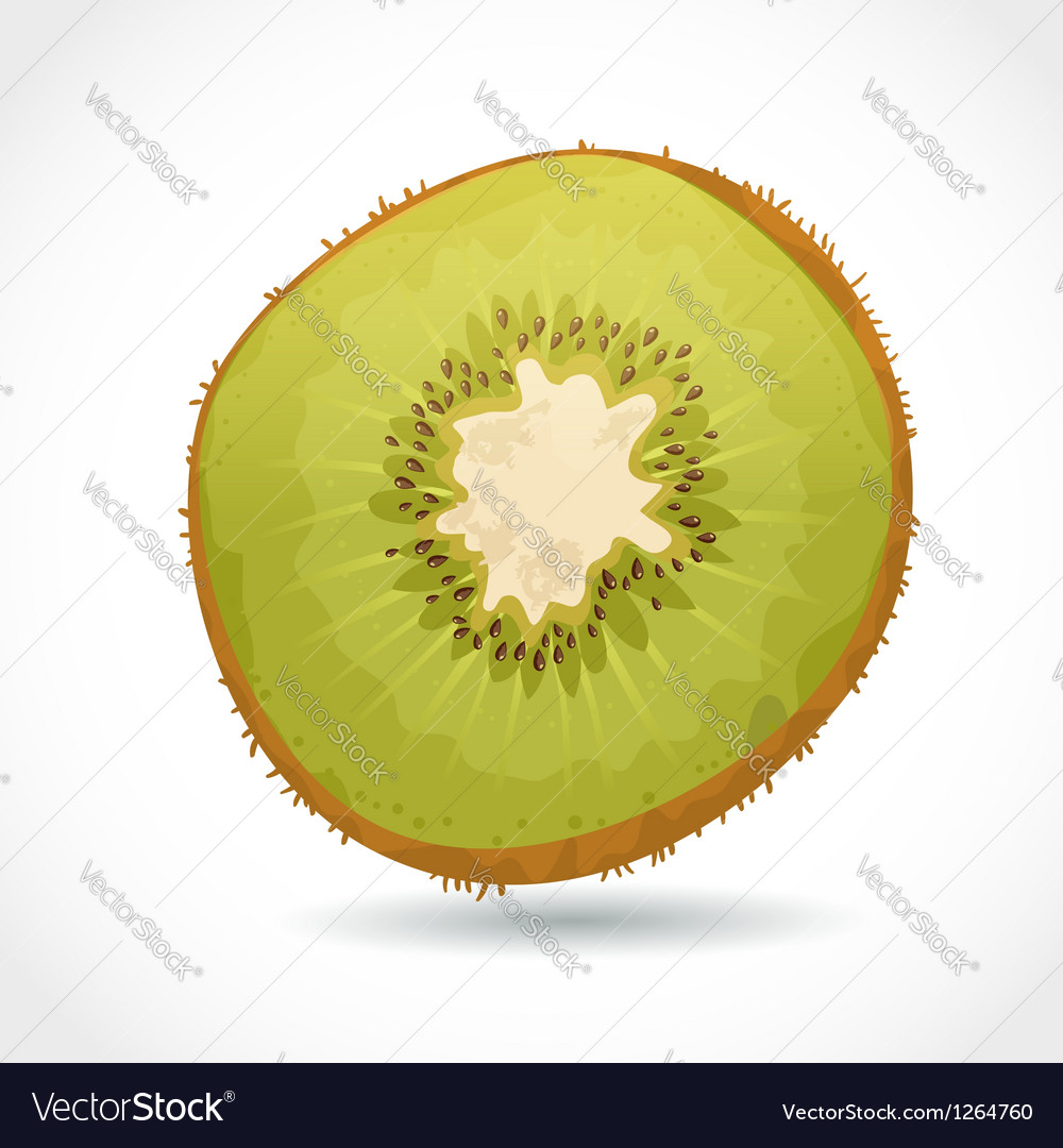 Fresh ripe piece of kiwi isolated on white vector | Price: 3 Credit (USD $3)