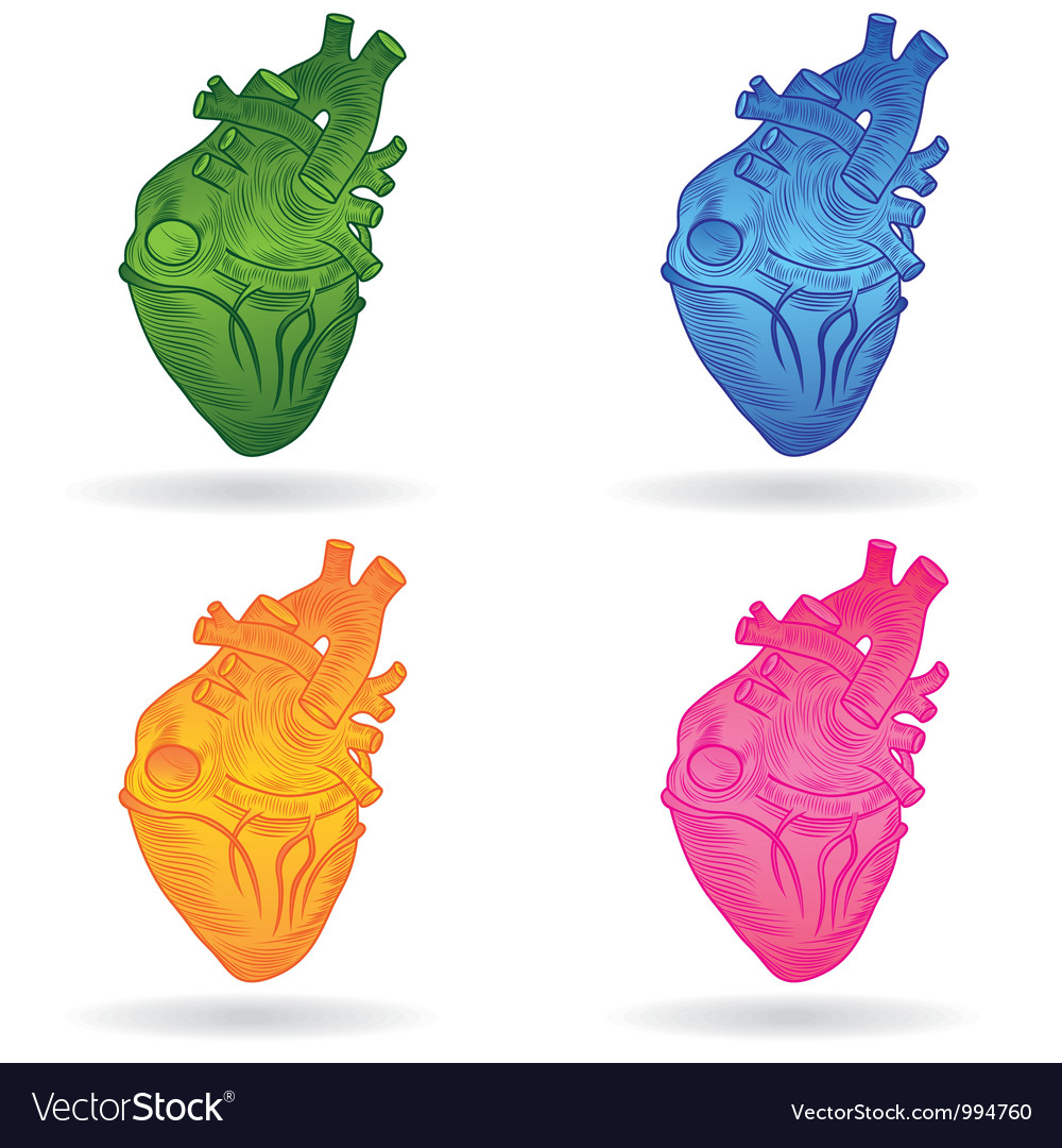 Heart real set vector | Price: 1 Credit (USD $1)