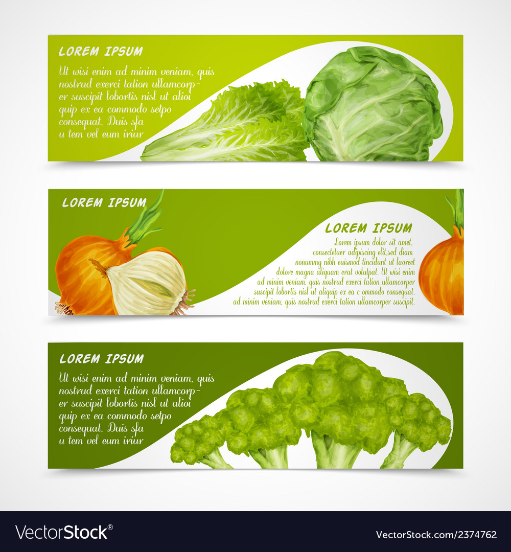 Vegetables banners horizontal vector | Price: 1 Credit (USD $1)