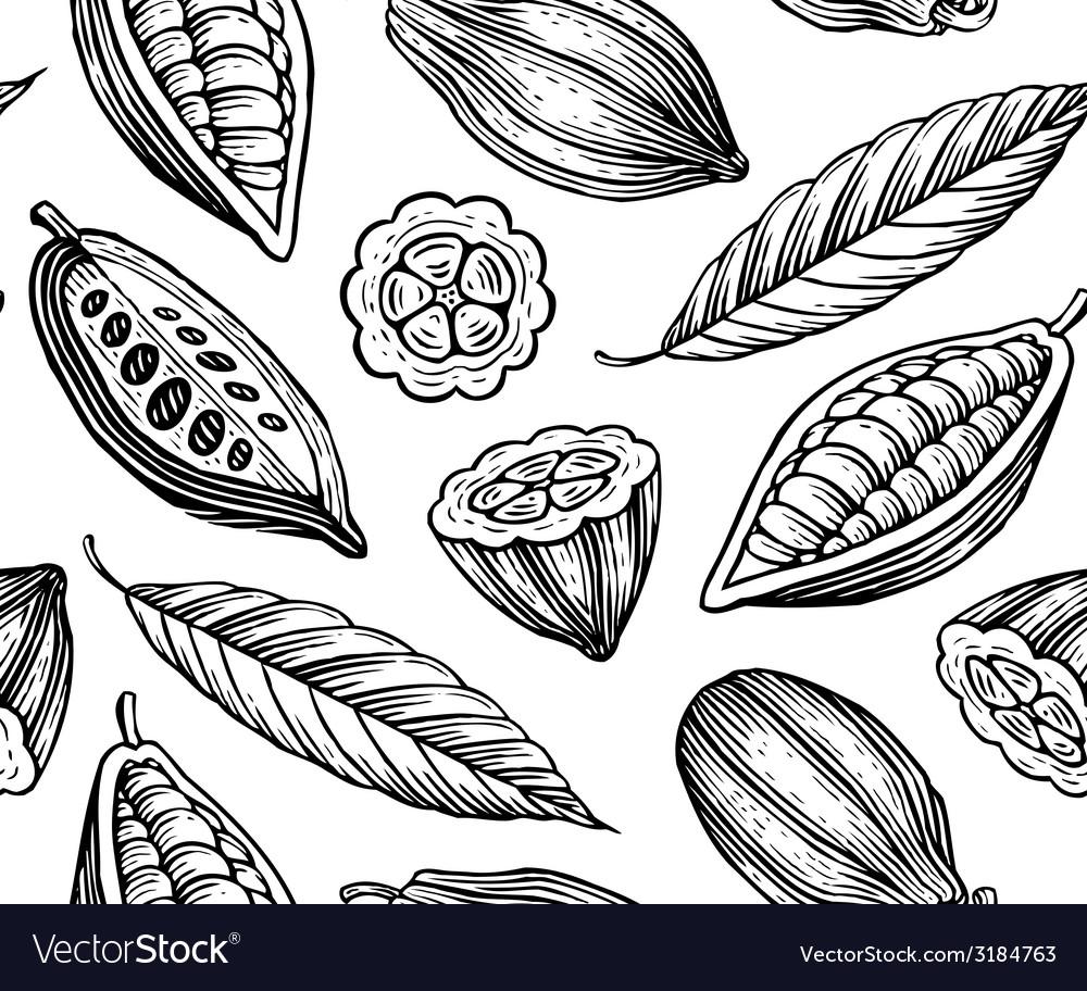 Cocoa pattern vector | Price: 1 Credit (USD $1)