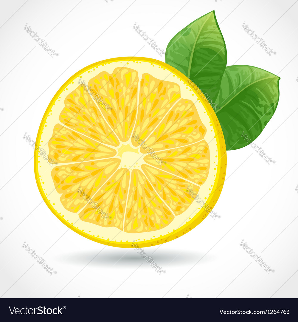 Fresh juicy piece of lemon isolated on white vector | Price: 3 Credit (USD $3)