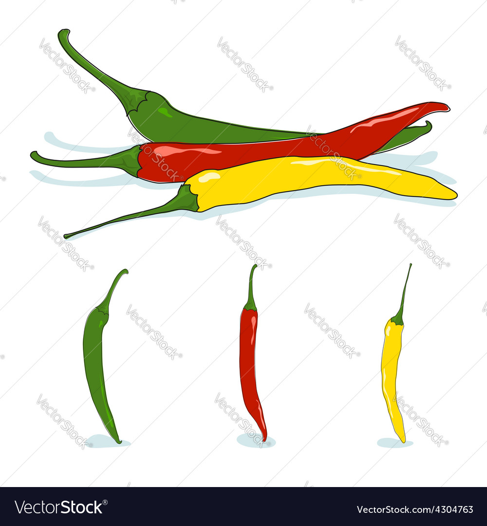 Red green and yellow hot chili pepper vector | Price: 1 Credit (USD $1)