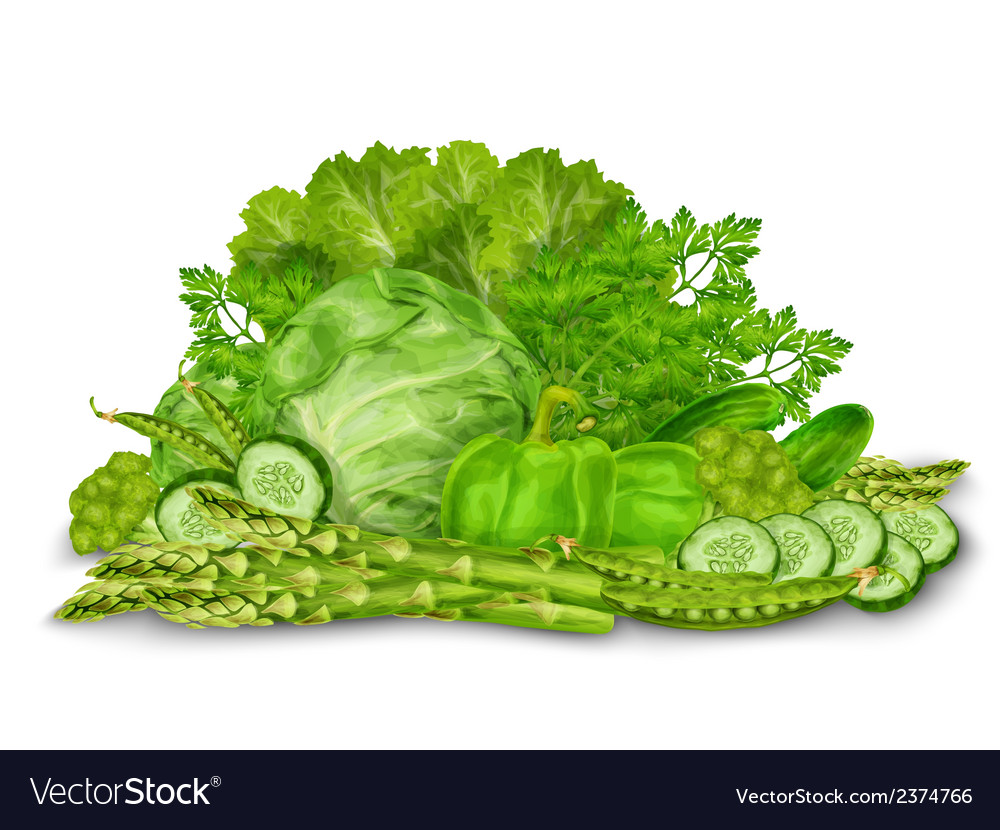 Green vegetables mix on white vector | Price: 1 Credit (USD $1)