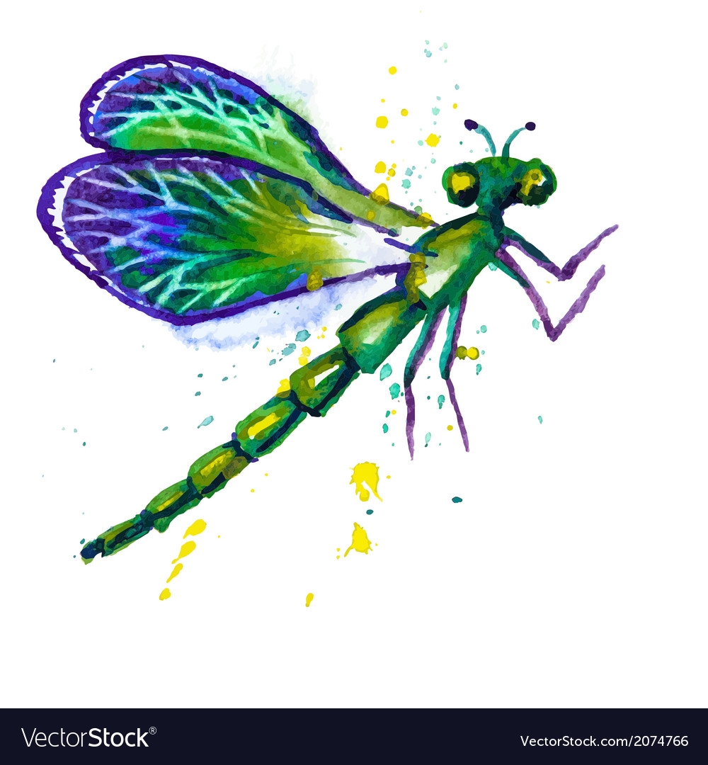 Green watercolor dragonfly vector | Price: 1 Credit (USD $1)