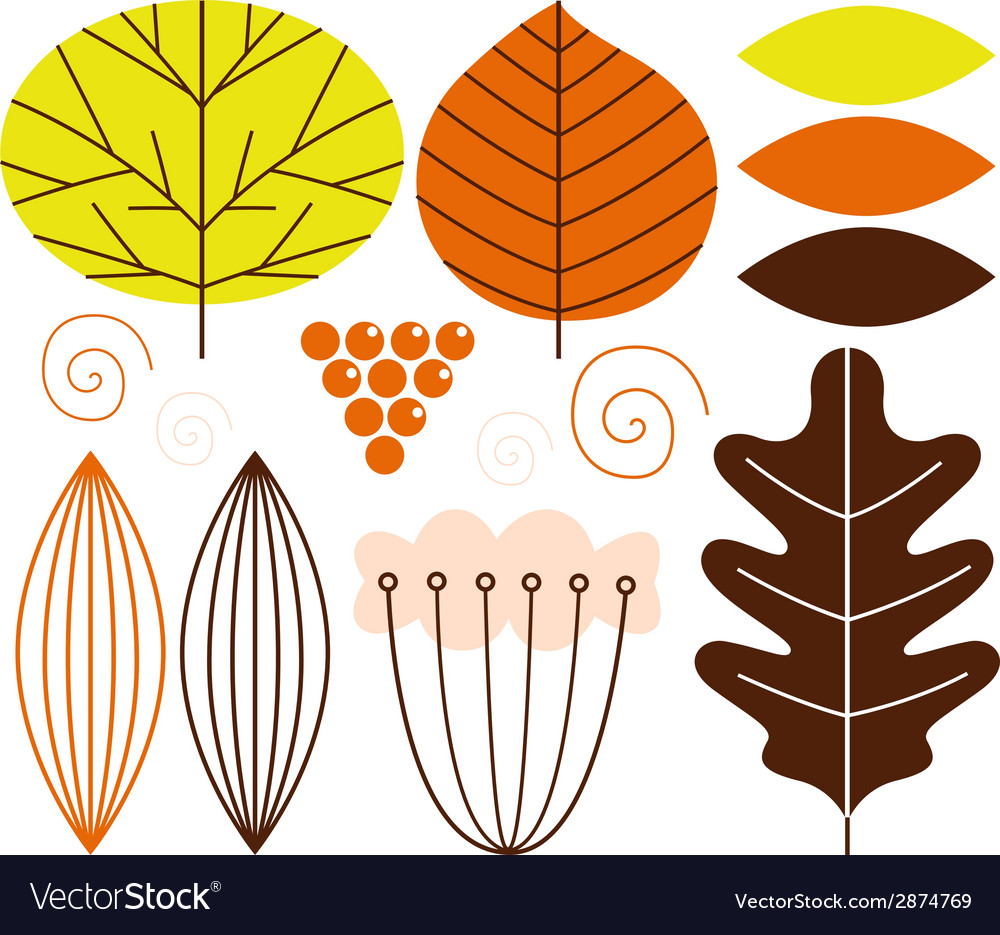Beautiful colorful autumn leaves set vector | Price: 1 Credit (USD $1)