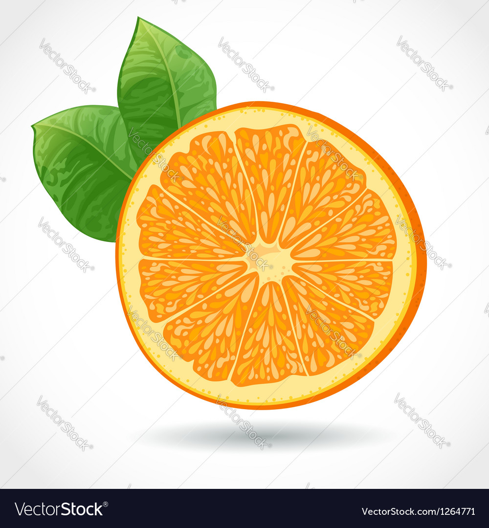 Fresh juicy piece of orange isolated on white vector | Price: 3 Credit (USD $3)