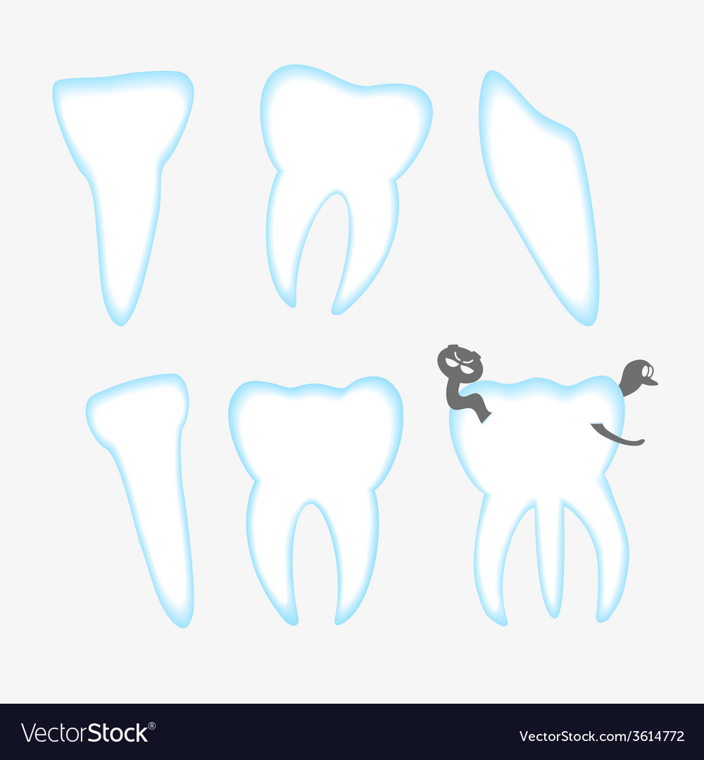White and blue teeth with decay eps10 vector | Price: 1 Credit (USD $1)