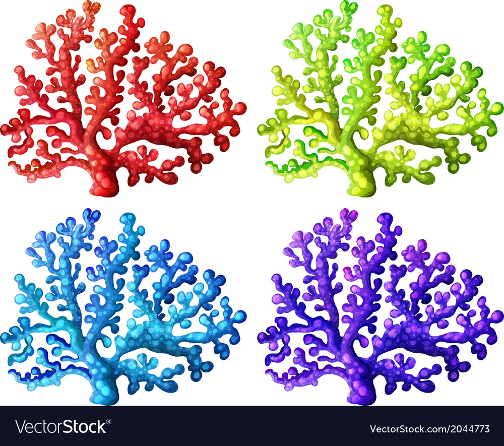 Colorful coral reefs vector | Price: 1 Credit (USD $1)