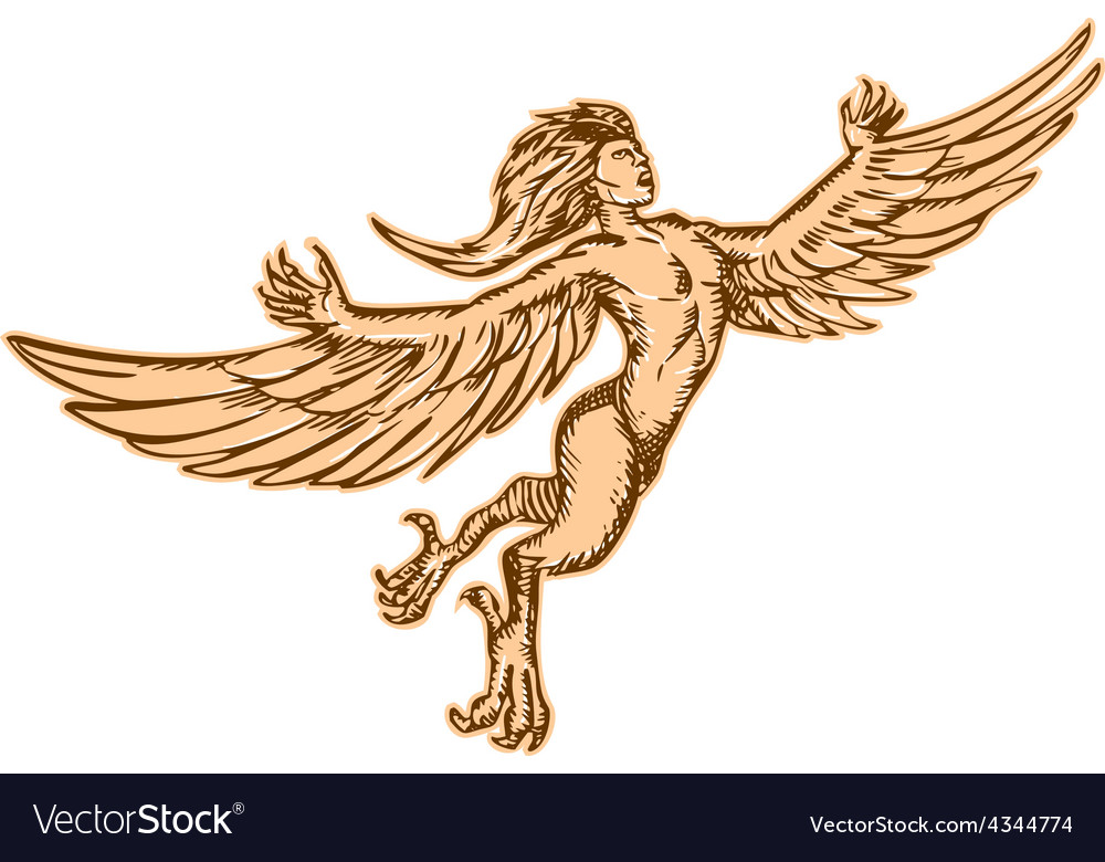 Harpy flying front etching vector | Price: 1 Credit (USD $1)