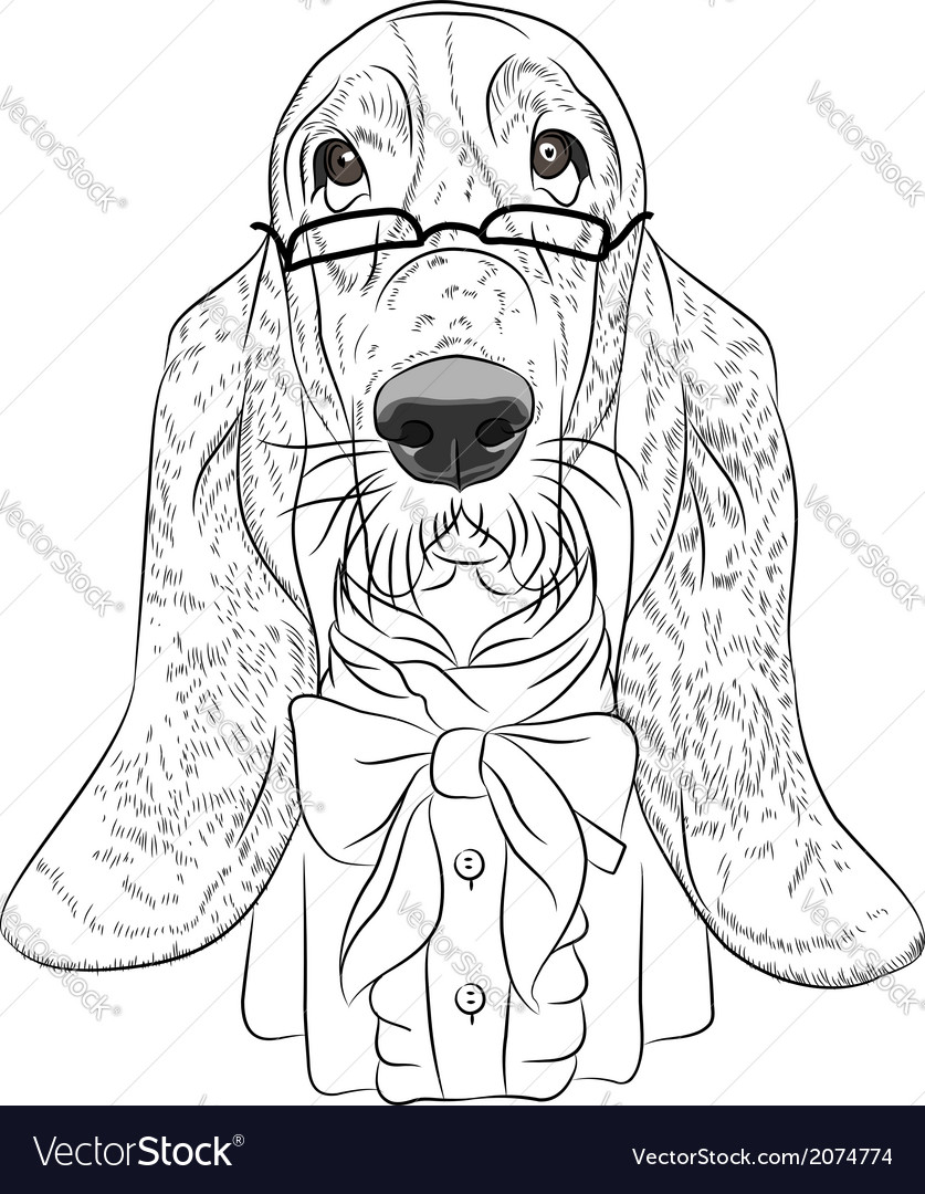 Hipster dog basset hound vector | Price: 1 Credit (USD $1)