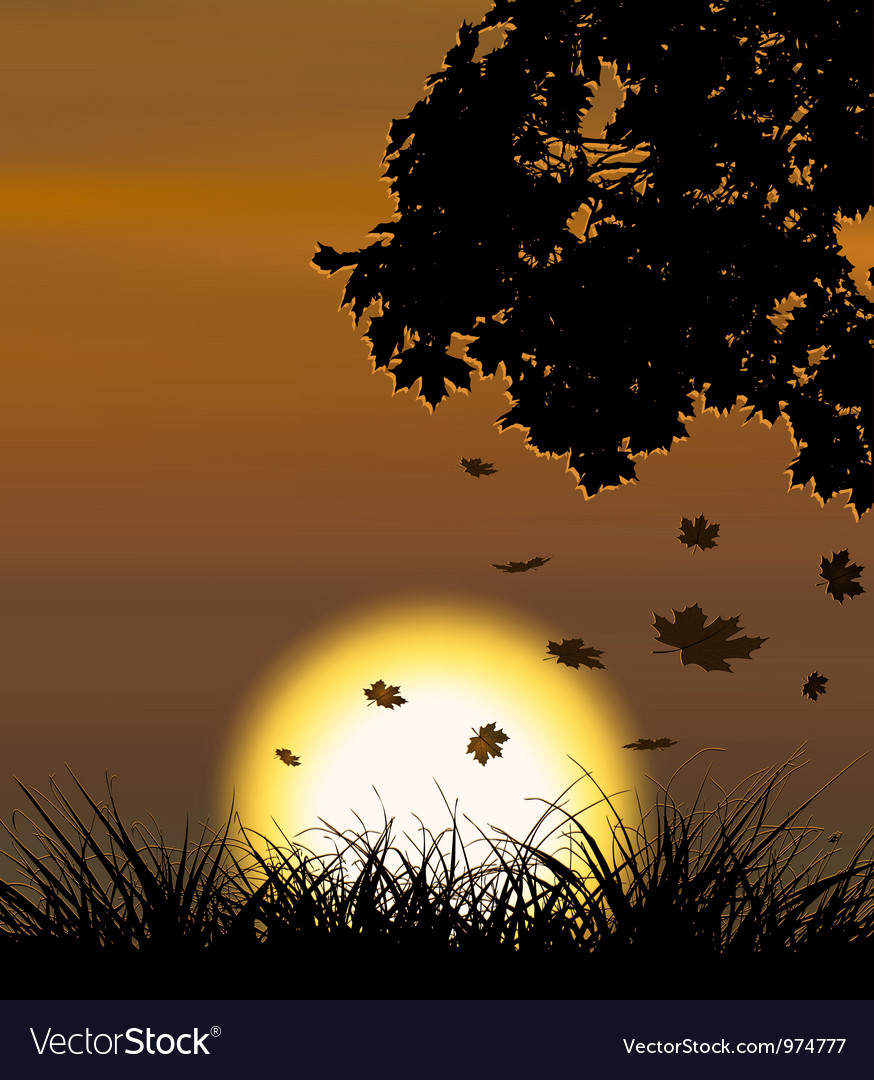 Autumn sunset background with falling maple leaves vector | Price: 1 Credit (USD $1)