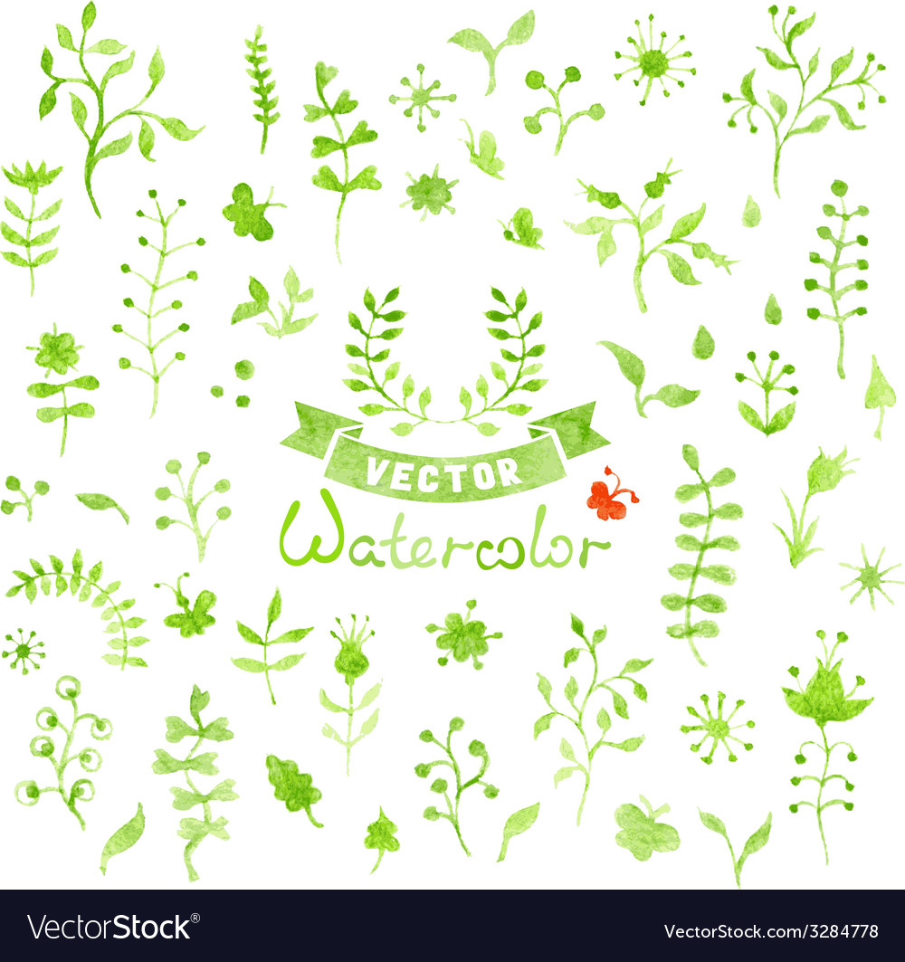 Set of watercolor nature elements vector | Price: 1 Credit (USD $1)