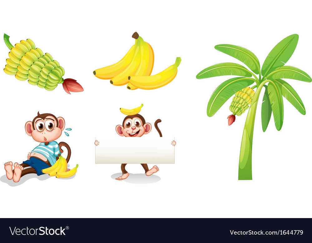 Bananas and monkeys with an empty signboard vector   Price: 3 Credit (USD $3)