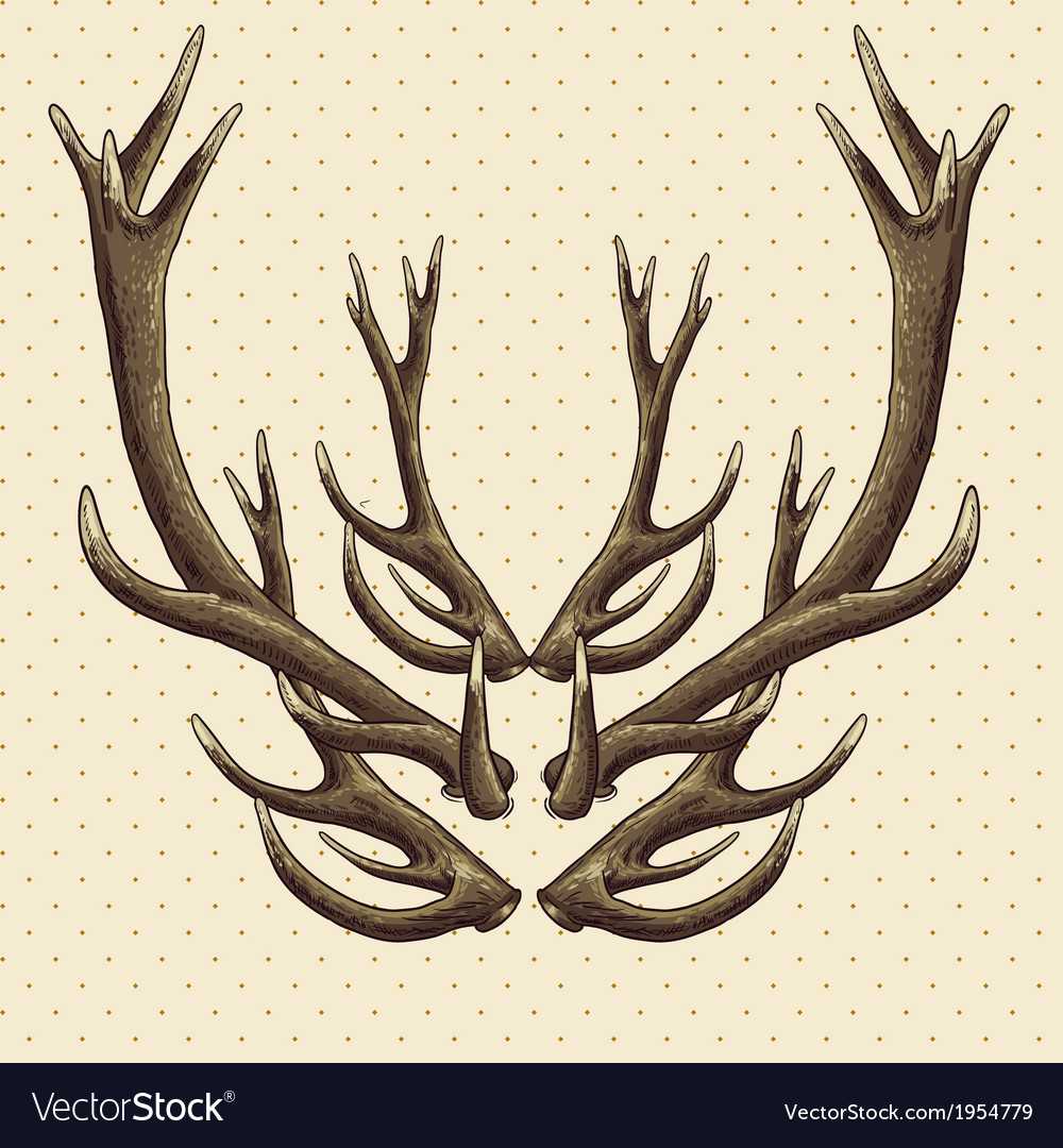 Hipster vintage background with deer antlers vector | Price: 1 Credit (USD $1)