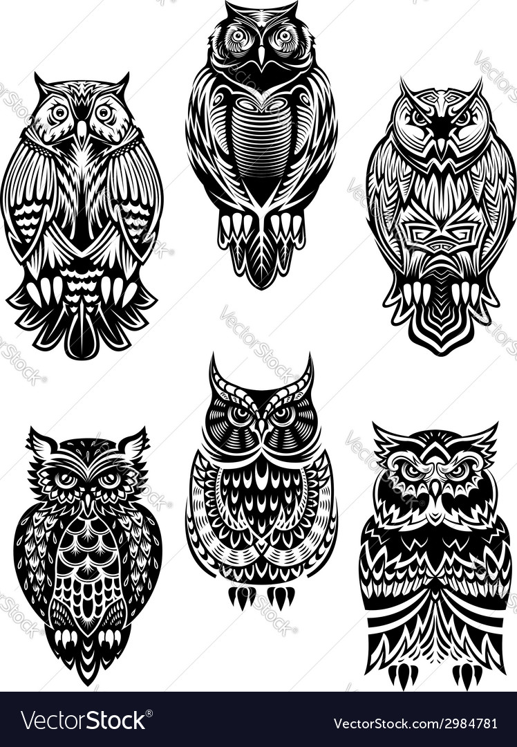 Tribal owl birds set vector | Price: 3 Credit (USD $3)