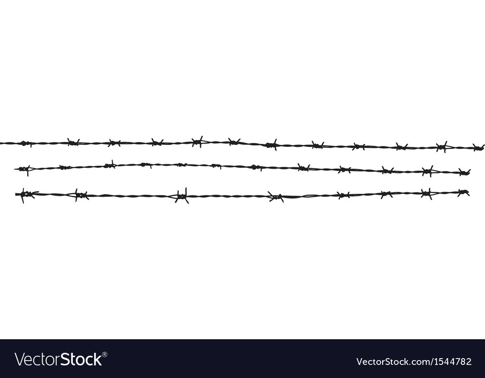 Barbed wire mg 0751 vector | Price: 1 Credit (USD $1)