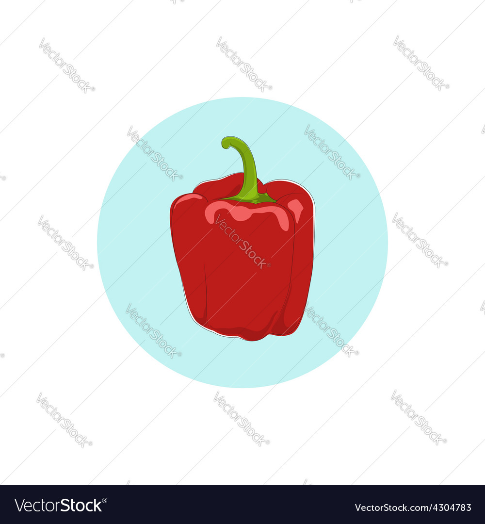 Icon red bell peppersweet pepper or capsicum vector | Price: 1 Credit (USD $1)