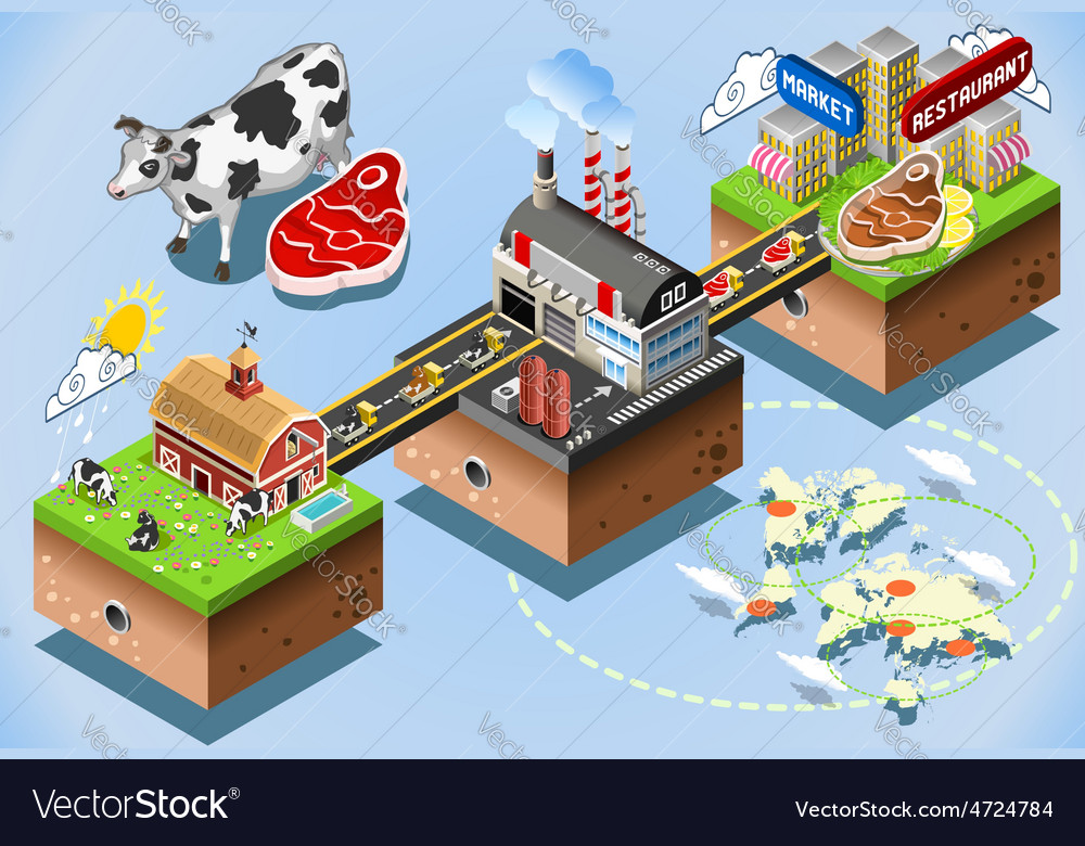 Isometric infographic beef distribution chain vector | Price: 1 Credit (USD $1)