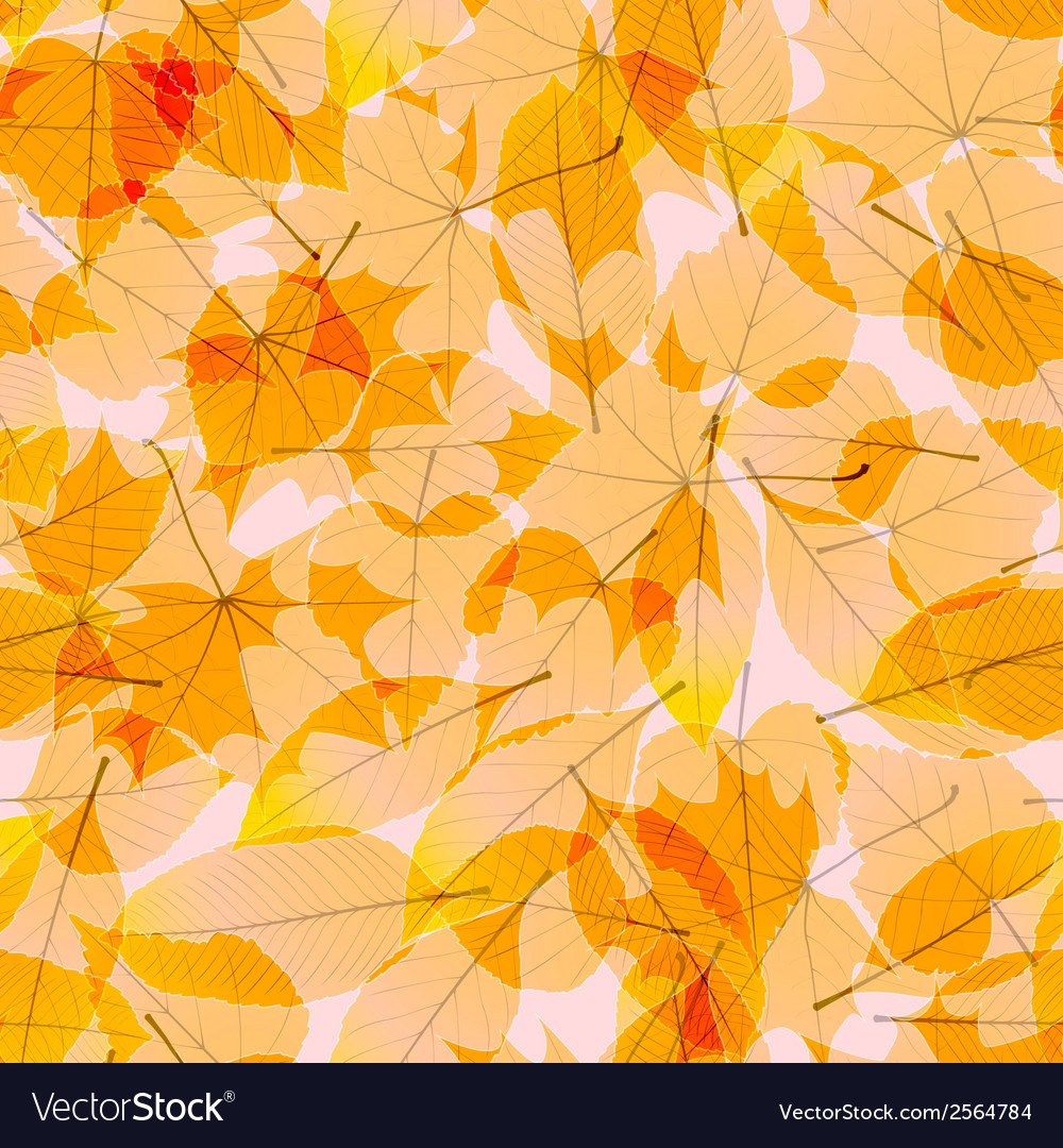 Transparent autumn leaves plus eps10 vector | Price: 1 Credit (USD $1)