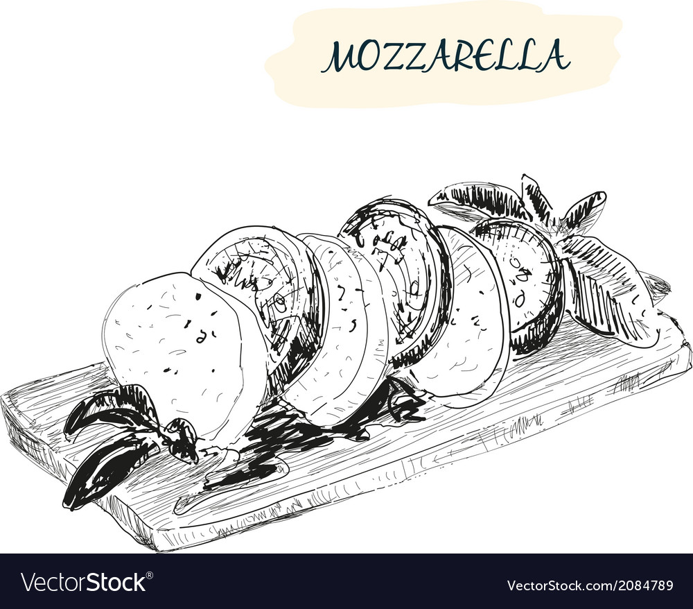 Mozzarella vector | Price: 1 Credit (USD $1)