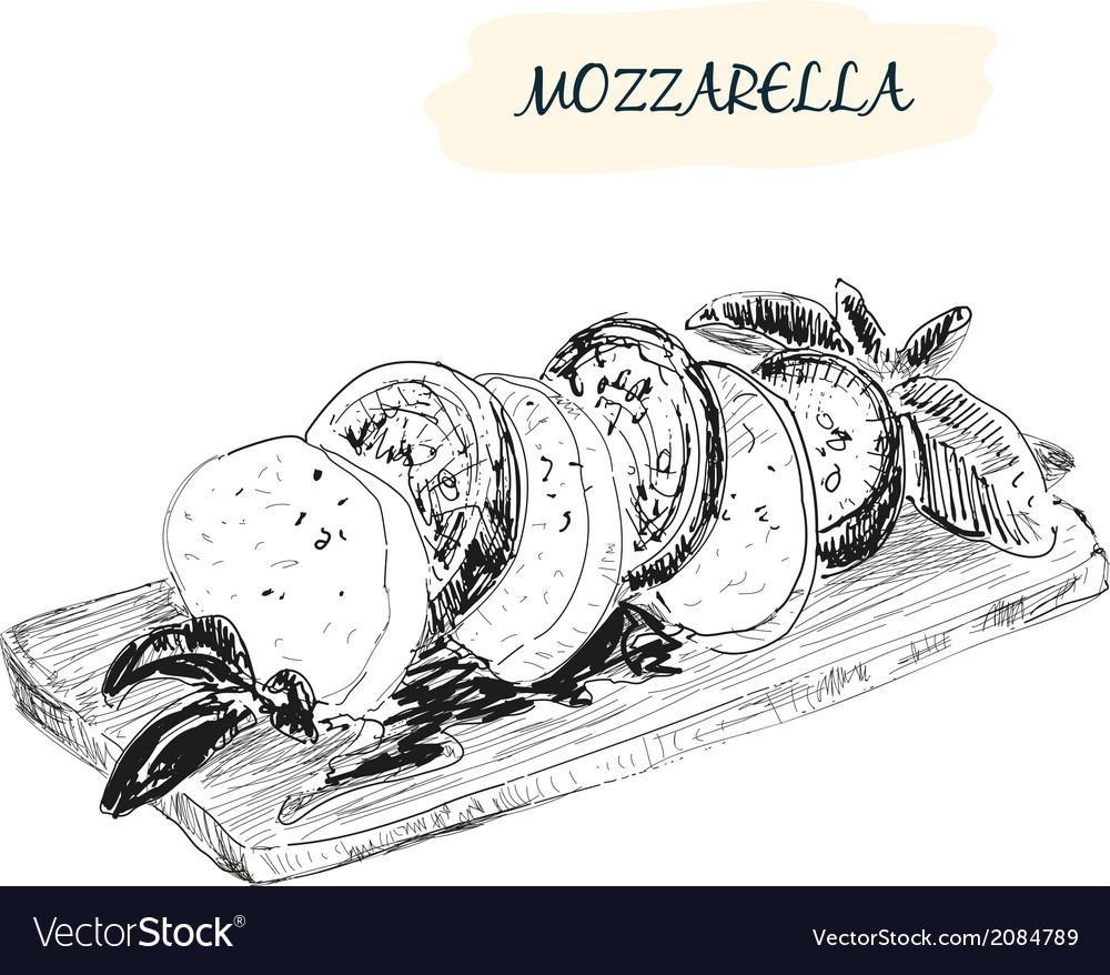 Mozzarella vector | Price: 1 Credit (USD $1)