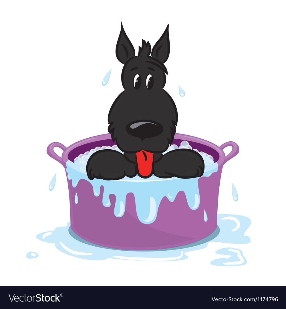 Funny puppy in the bath vector | Price: 1 Credit (USD $1)