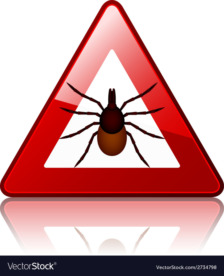 Ixodes ricinus tick road warning sign vector   Price: 1 Credit (USD $1)