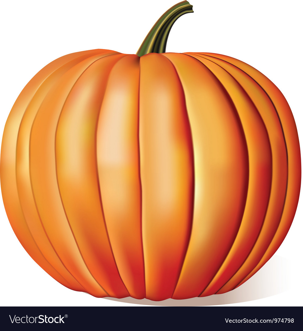 Ripe pumpkin vector | Price: 3 Credit (USD $3)