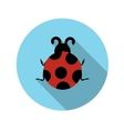 Flat design concept ladybug with long shadow vector