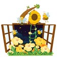 Bees bird house and window vector