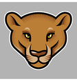 Puma vector