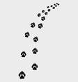 Footprints of dog vector