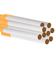 Filter cigarettes vector