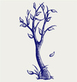 Trees silhouettes vector