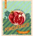 Pomegranate retro poster vector