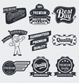 Vintage label set vector