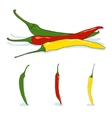 Red green and yellow hot chili pepper vector