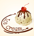 Ice cream ball vanilla chocolate chip vector