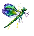 Green watercolor dragonfly vector