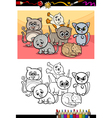 Kittens group cartoon coloring book vector